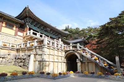 6年ぶりの釜山一人旅 二日目 紅葉を期待して慶州へ