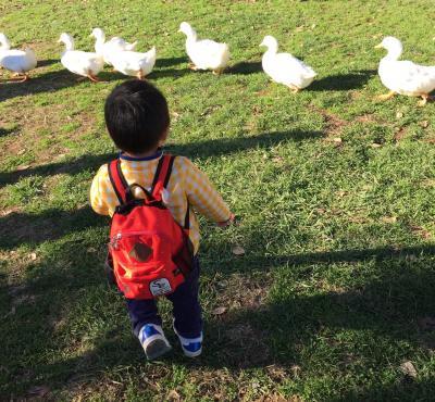 日帰り☆2歳4ヶ月子連れ 成田ゆめ牧場