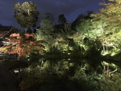 2018-10-27その2 祇園・清水寺から高台寺と圓徳院のライトアップ