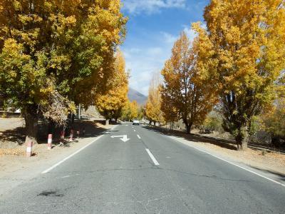 チベット旅行(8,000m峰五座大展望)11日目 日喀則(シガツェ)⇒ヤムドク湖⇒拉薩(ラサ)