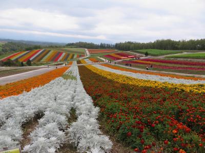 北海道2018-Ⅱ ~自転車で美瑛観光する