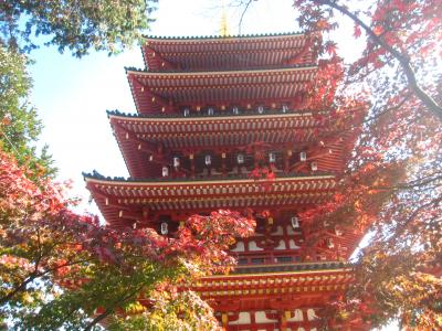 新撰組ゆかりの地を巡り、高幡不動尊の紅葉を見に行く