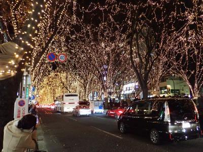 冬の東北(6)SENDAI光のページェント:冬の仙台・定禅寺通を埋める60万球のLED
