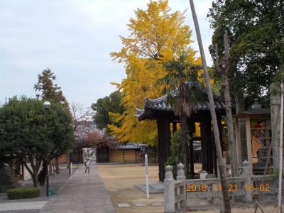 車で四国八十八ヶ所お遍路の旅 、香川県72番から77番。紅葉の小豆島その1