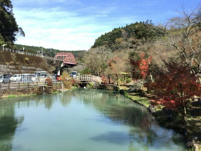 青井岳自然公園で紅葉を