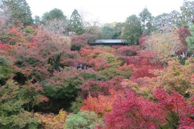 久しぶりの奈良・京都 ① ~京都・東福寺と東山の紅葉