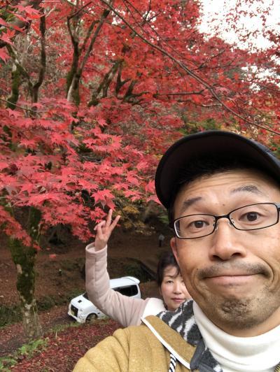 2018秋 大阪から城崎旅行④城崎マリンワールド・猿尾滝・養父神社