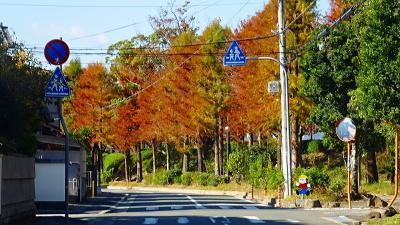 伊丹ウォーキングコースを歩く 緑道コース・・・その4。