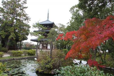 久しぶりの奈良・京都 ④ ~興福寺国宝館と斑鳩の里