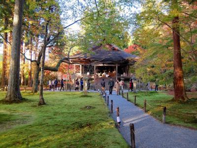 紅葉の京都大原 三千院
