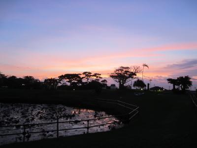 2018年11月 沖縄小浜島1泊2日滞在記