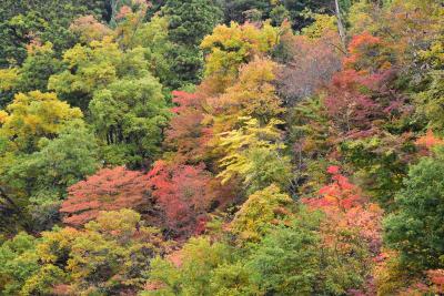 紅葉真っ盛りの西山温泉・会津柳津・只見線 2018(福島)