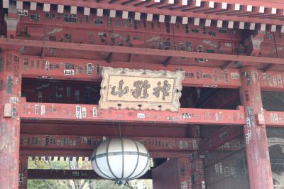 秋の護国寺散策~重要文化財「月光殿」特別拝観