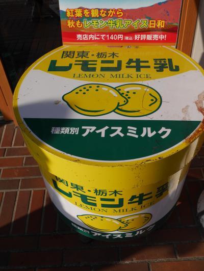 【栃木】はとバスに乗って栃木へ行ってみた ~レモン牛乳・にっこり梨に出会う旅~