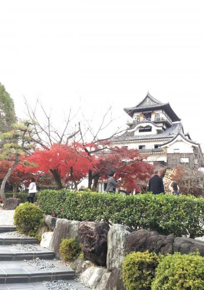 犬山城で紅葉散策♪