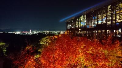 今年も京都に紅葉狩りをしに行きました。(洛北・洛東編)