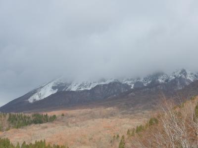 紅葉から冠雪した大山を観光しました。寒かったです!! 0(*-*)0