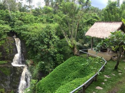綺麗な滝の景色で、ロマンチックランチ