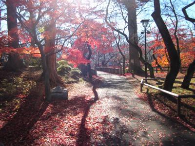 信州・伊那路 晩秋の紅葉に湯ったり温泉とグルメツアーにぶらぶらドライブ旅