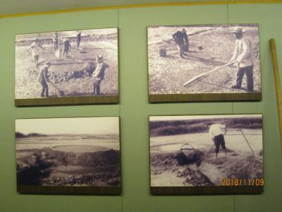 上海の新場古鎮・新場歴史文化陳列館・塩の歴史