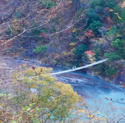 運気を上げたい!夢の吊り橋に挑戦!!