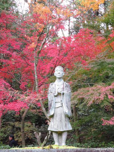 2018秋 「そうだ、関西へ行こう!」(2)紅葉狩り@京田辺・一休寺