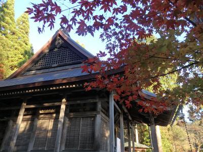 秋の湖北 もみじ旅 ~浅井氏の小谷城と鶏足寺を巡る~