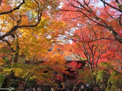 2018秋 「そうだ、関西へ行こう!」(5)紅葉狩り@嵐山嵯峨野・天龍寺、常寂光寺