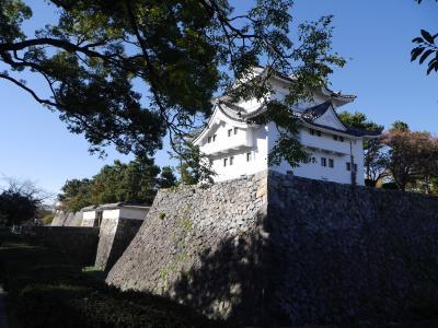 ♪秋ぃの~夕陽に照るぅ山~紅葉~♪を求めて、愛知で熱田神宮、名古屋城。☆。☆。