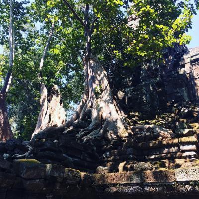 アンコールトムではプラサットプリアパリライ寺院がおすすめです。