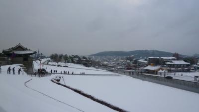 ソウルの初雪に遭遇 今年2度目のゆる~い母娘旅