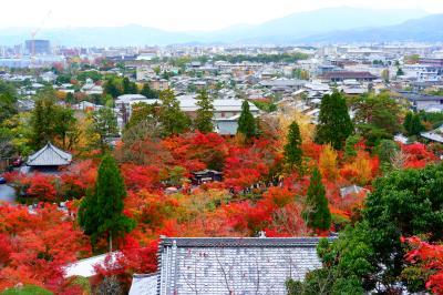 秋の京都で紅葉をめでる その8 やっぱり永観堂はすごかった!