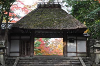 京都2018紅葉巡り(2)