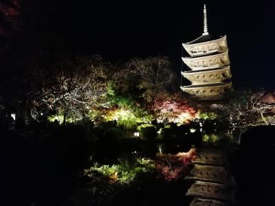2018.11 韓国(13)京都寄り道観光編・秋の東寺ライトアップ