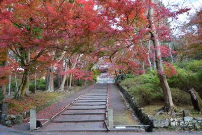 毘沙門堂の紅葉から歩いて大文字山そして銀閣寺前へ!2018年