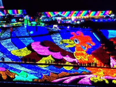 東京ドイツ村の2018-2019ウィンターイルミネーション(夜景サミット2012で関東三大イルミネーションに認定)
