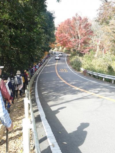 阪急トラピックス ハイキング祭り第13弾in北摂五月山