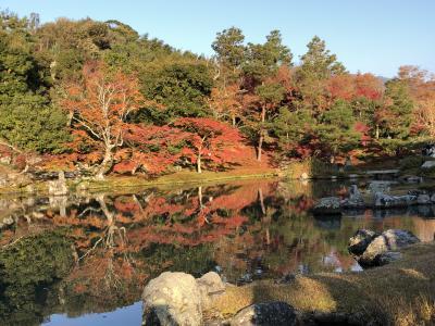 晩秋の3連休+1 栗林公園・小豆島・姫路城・京都紅葉巡り(第4日)