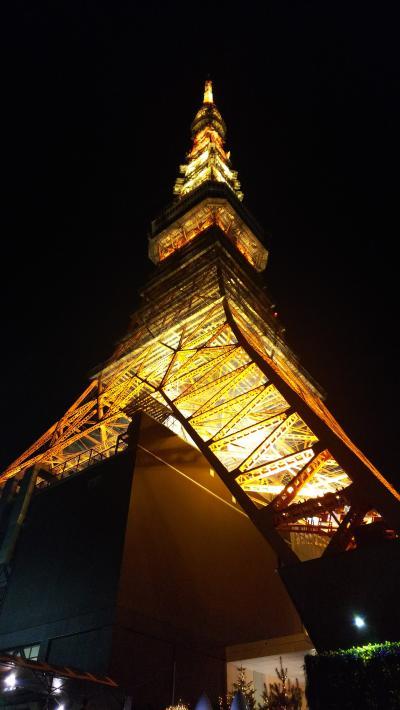 一年ぶり東京観光!イルミネーション&ホテルステイ備忘録