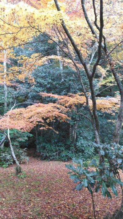 秋の瑞鳳殿