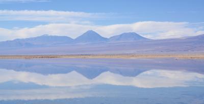 アンデス山脈を越えて、世界最高峰4000m超、天空の砂漠:『アタカマ砂漠』で美しい光景と、薄い空気に、くらくらでへろへろになる旅....#14....アタカマ塩湖、やっと出会えたフラミンゴ~(サンペドロ・デ・アタカマ San Pedro de Atacama/チリ)
