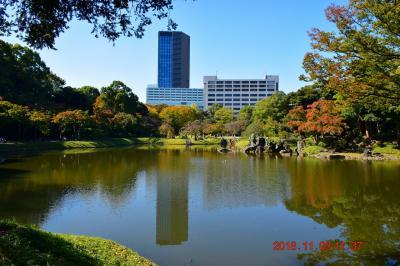 【東京散策92-2】 東京ドーム野球殿堂博物館と隣にある紅葉にはまだ早い小石川後楽園を周ってみた  《小石川後楽園》