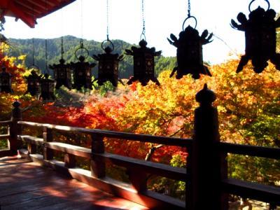 紅葉の談山神社と依水園へ