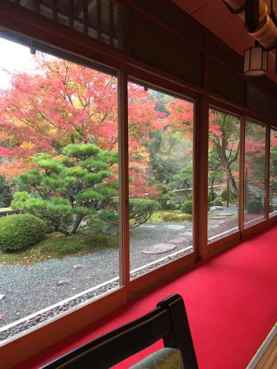 11月3連休の京都紅葉旅行。前半大原編。