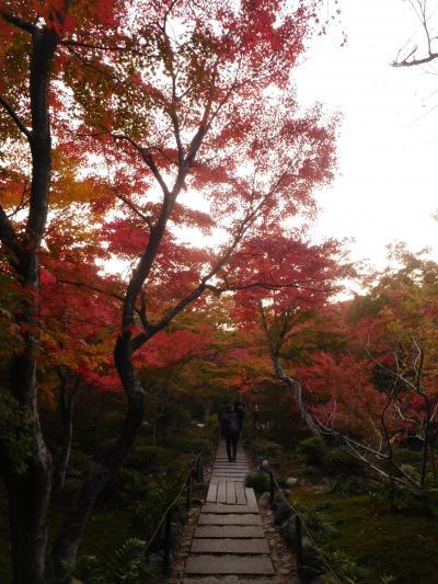 京都2018紅葉 【12】宝筐院