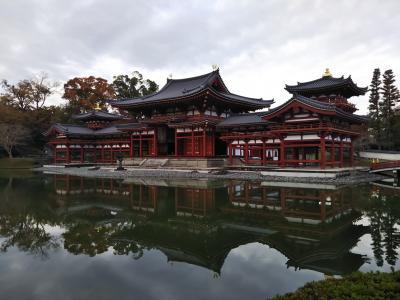 2018年 正倉院展を見に奈良へ 久々の母娘旅 3日目 平等院(奈良じゃないけど)