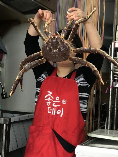 カニ蟹かに~