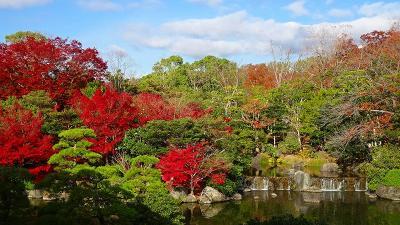 大阪万博が決まったので、紅葉の万博公園へ 日本庭園の紅葉 中巻。