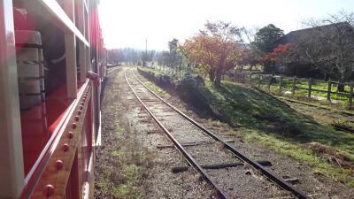 トロッコ列車とボンネットバス・紅葉ハイキングin養老渓谷