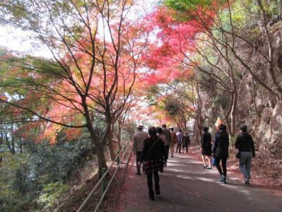 紅葉の見頃を迎えた鳳来寺山を訪ねて